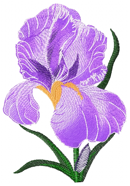 Iris Small Free Embroidery Flowers Machine Embroidery Community