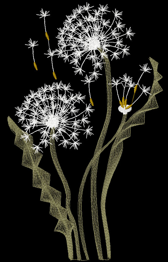 Dandelions free embroidery design