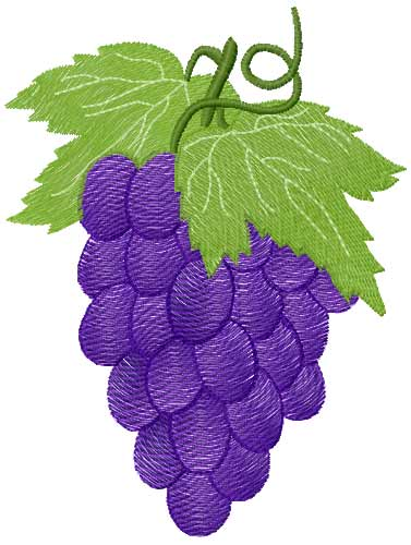 Grape free embroidery design