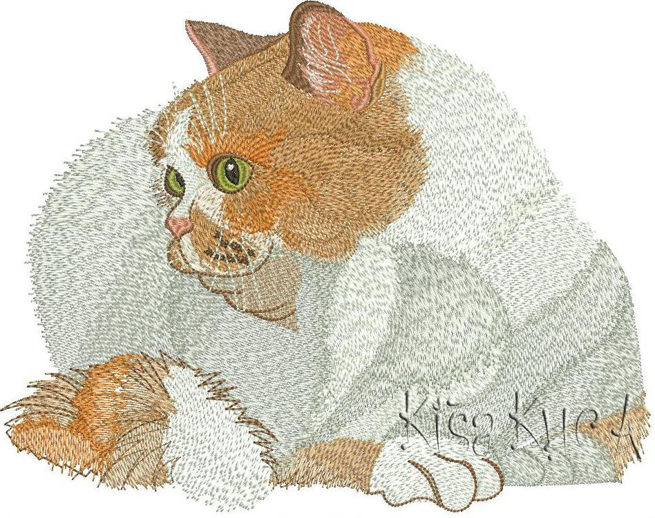 Very cute home cat free embroidery design