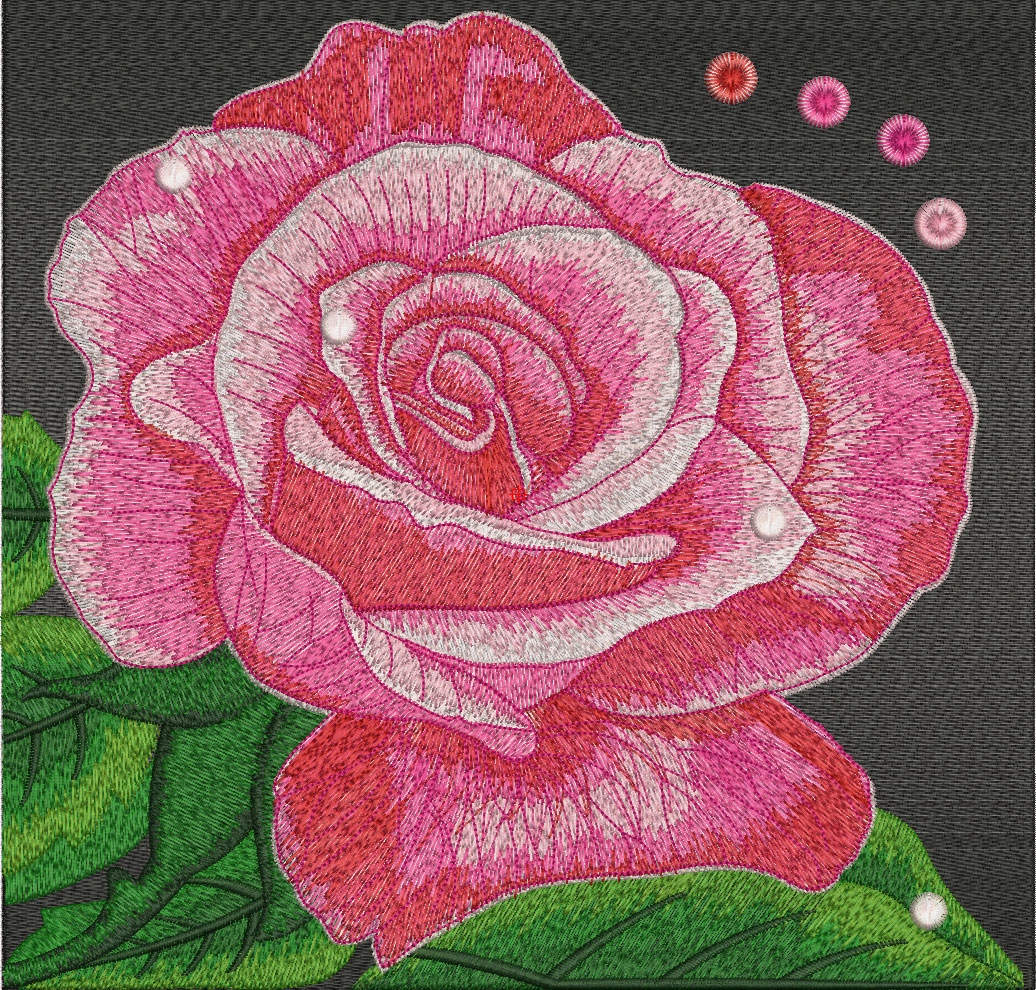 Big Rose Free Embroidery Design Wilcom Elements Machine