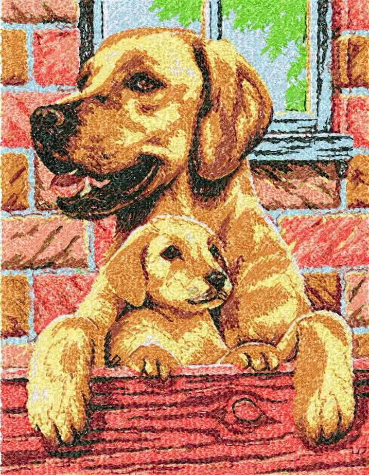 Two Labrador photo stitch free embroidery design