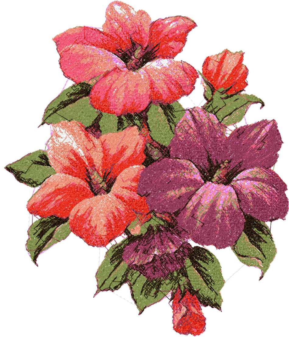 Hibiscus photo stitch free embroidery design free embroidery designs links and download - Hibiscus images download ...