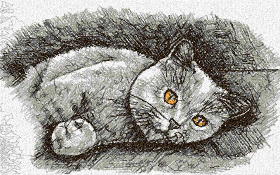 Картинки британских кошек для срисовки