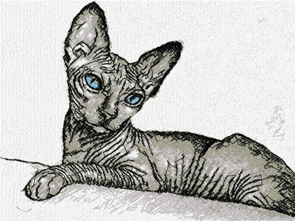 Sphynx Cat photo stitch free embroidery design