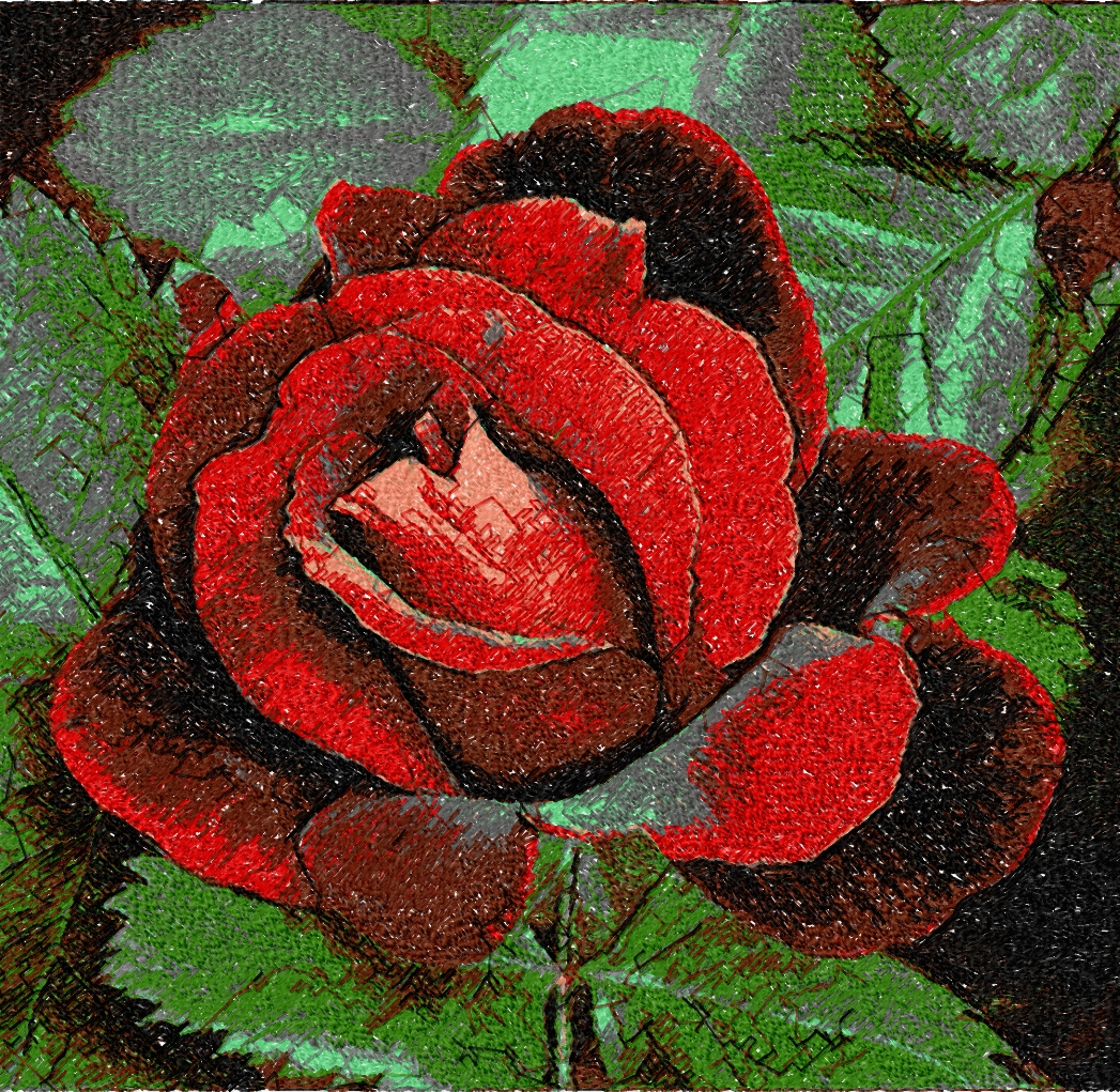 Rose  photo stitch free embroidery design22