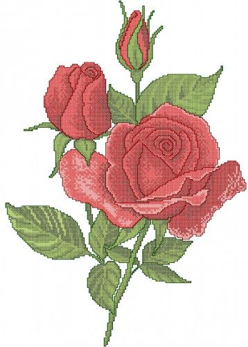 Red Rose Cross Stitch Free Embroidery Design 12 Cross