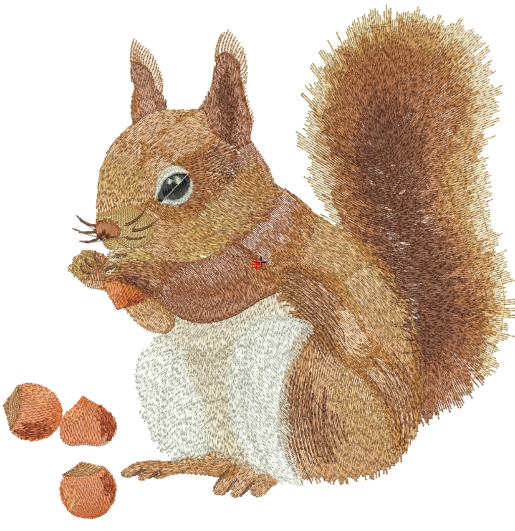 Squirrel Free Embroidery Design Free Embroidery Designs Links And