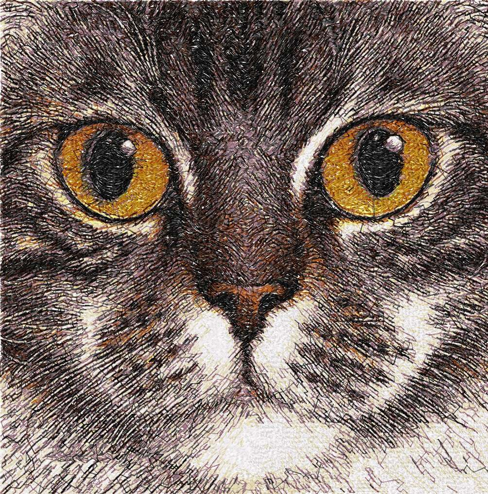 Cat Photo Stitch Free Embroidery Design 12 Free Embroidery Designs