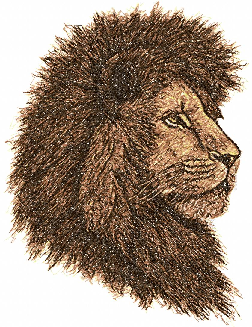 Lion Photo Stitch Free Embroidery Design Free Embroidery Designs