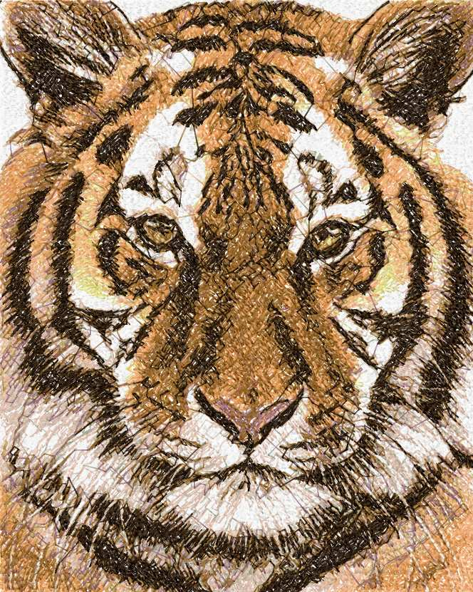 Tiger photo stitch free embroidery design 9