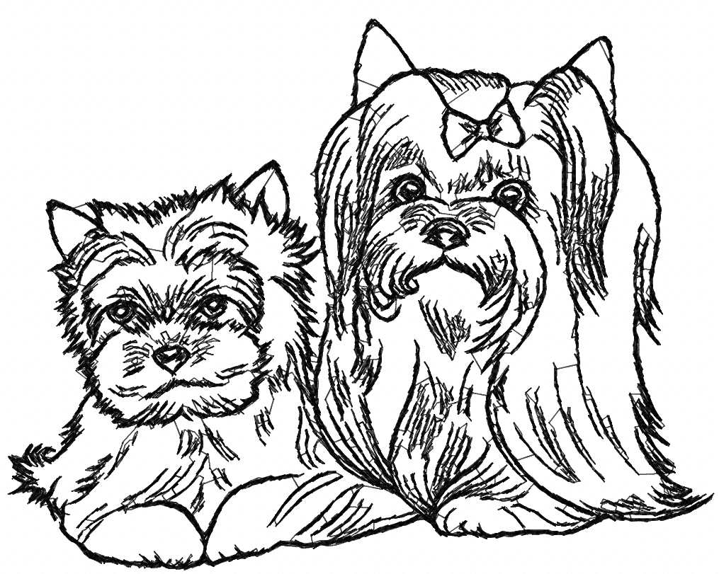 Yorkshire Terrier free embroidery design 5