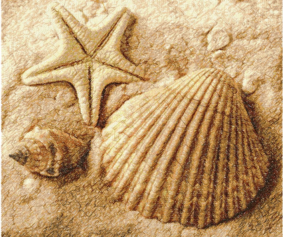 Sea shell photo stitch free embroidery design