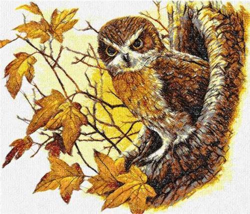 Autumn and Owl photo stitch free embroidery design