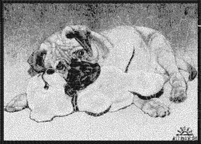 Bulldog photo stitch free embroidery design 5