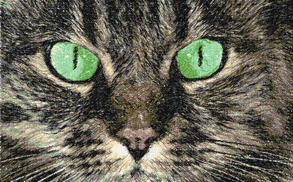 Cat photo stitch free embroidery design 20