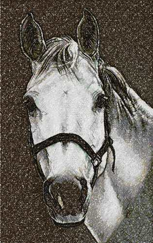 White horse photo stitch free embrodiery design