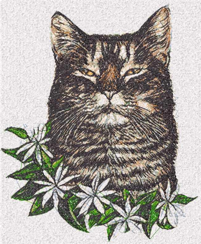 Cat Photo Stitch Free Machine Embroidery Design 31 Photo Stitch