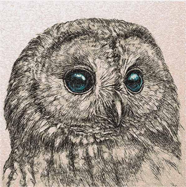 Owl photo stitch free embroidery design 25