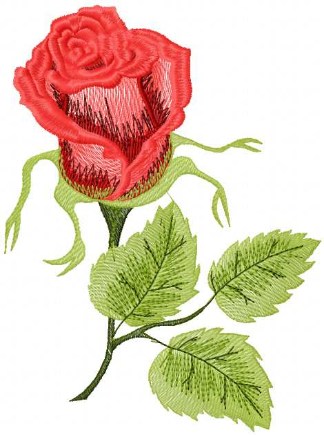 Red rose free machine embroidery design - Free embroidery designs links and download - Machine ...