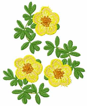 Embroidery Patterns Flowers Free Flowers Healthy