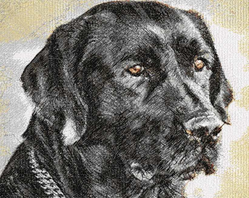 Black dog photo stitch free embroidery design 2
