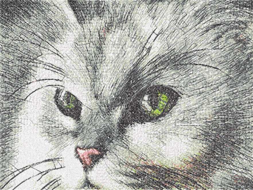 Cat photo stitch free embroidery design 43