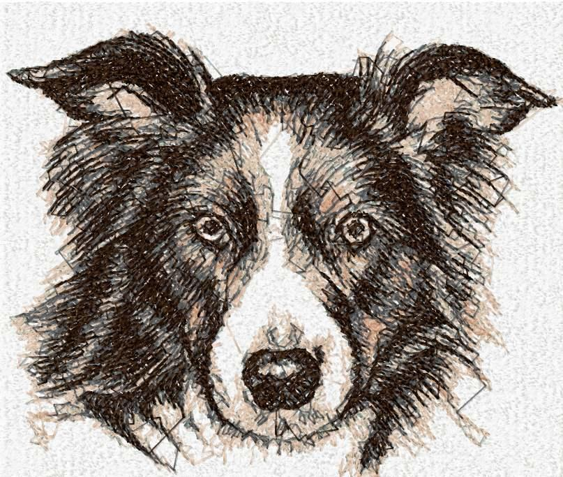 Dog photo stitch free embroidery design