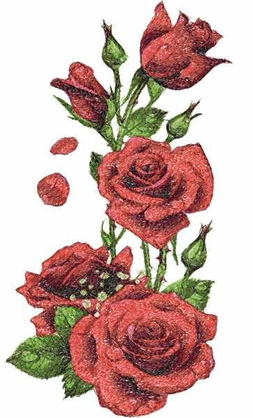 Rosebush photo stitch free embroidery design