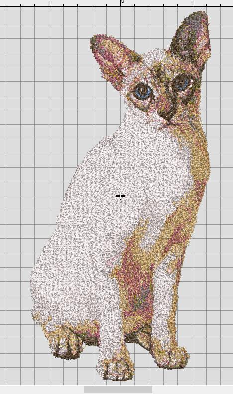 Realistic Siamese Cat free embroidery design