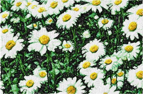 Field daisies photo stitch free embroidery design