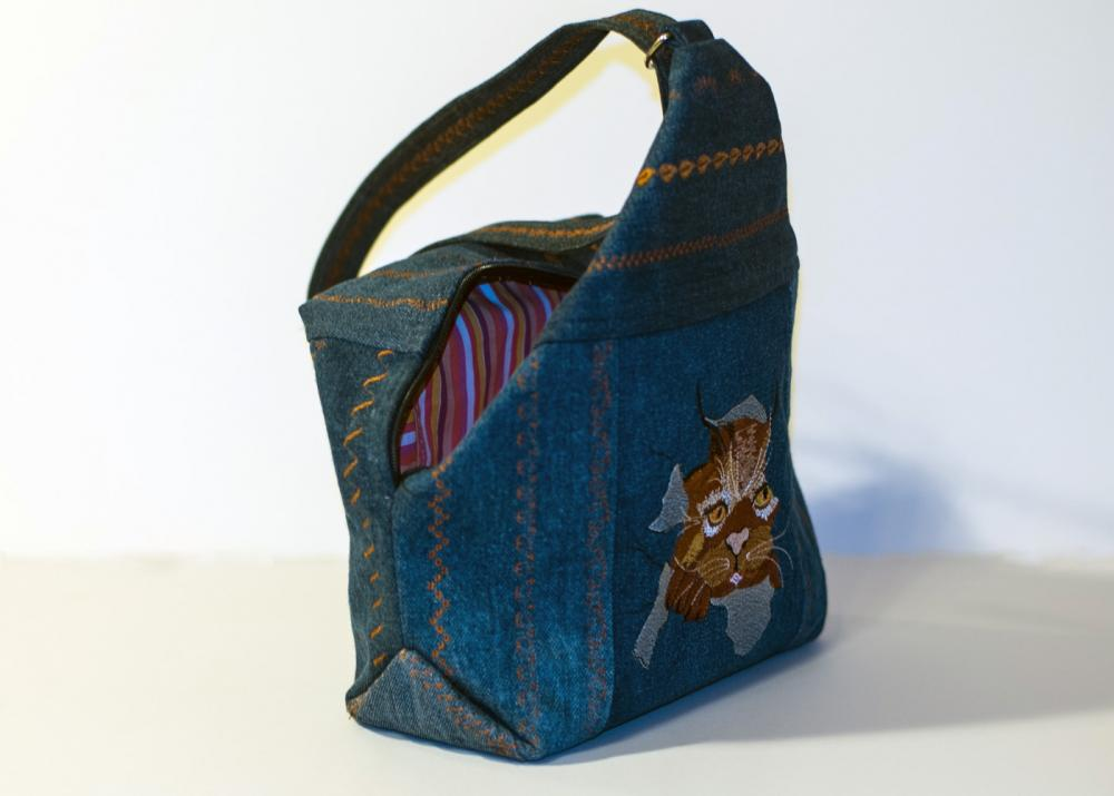 Bag with Angry cat free machine embroideyr design