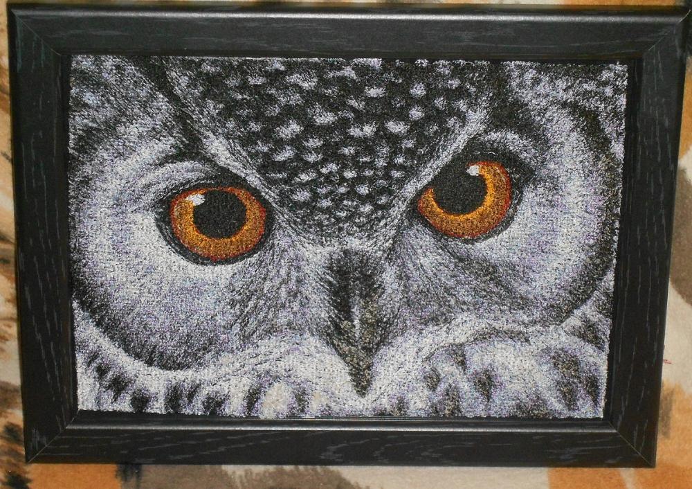 Owl photo stitch free embroidery design