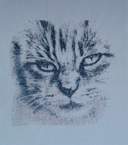 Grey cat muzzle free embroidery design