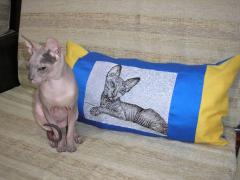 Pillow with Sphynx cat stitch free embroidery design