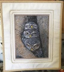 Owls photo stitch free embroidery design