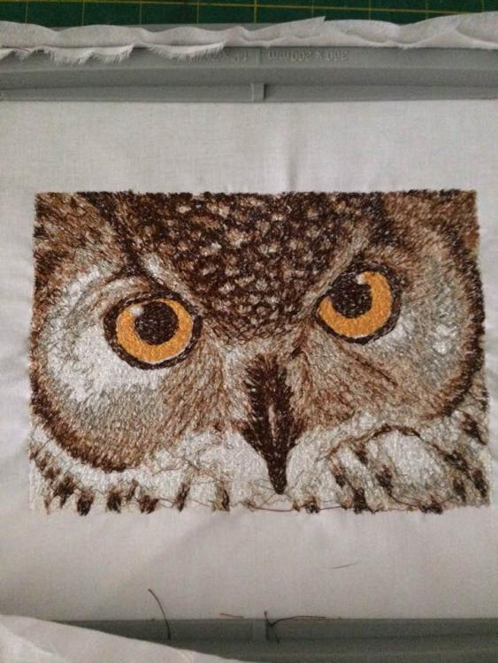 Embroidered Owl free design