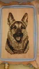 German Shepherd free embroidery design