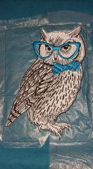 Polar owl in glasses embroidery design