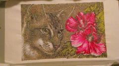 Cat and flower photo stitch embroidered design