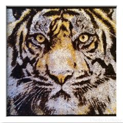 Tiger photo embroidery design