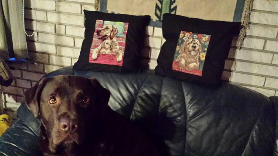 Cushions with dogs photo stitch free embroidery
