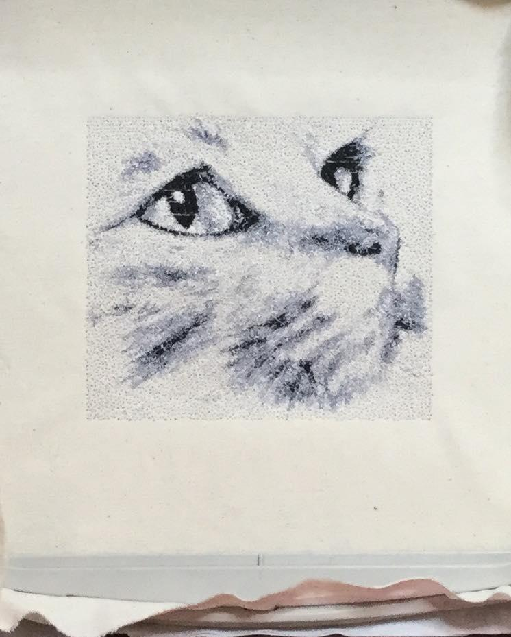 Cat photo stitch free embroidery