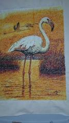 Flamingo photo stitch free embroidery design