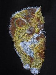 Cute kitten free machine embroidery design
