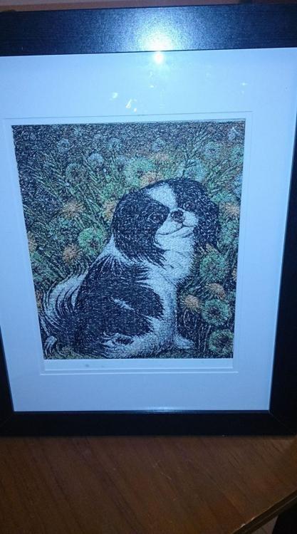 Dog photo stitch free embroidery design