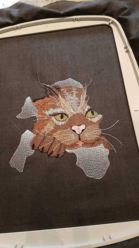 In hoop Angry cat free embroidery design - Showcase with fauna