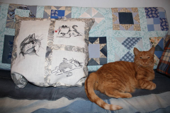 Embroidered cats on the pillow machine embroidery design
