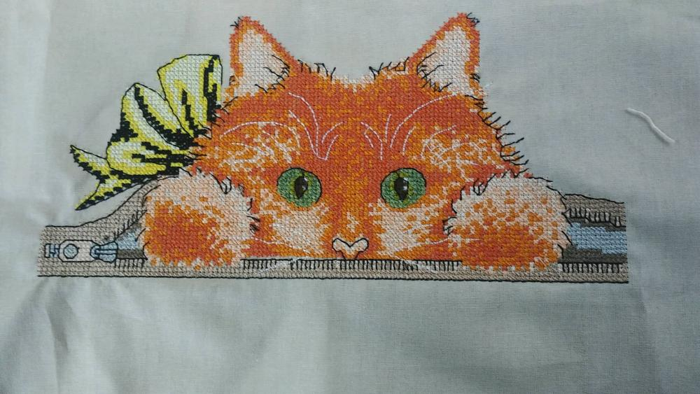 Cat inside cross stitch free embroidey design