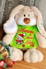 Embroidered toy dress with Funny snowman design